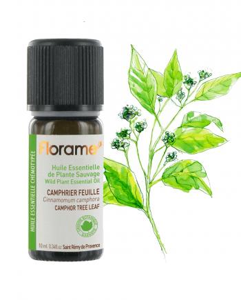 Florame Camphor Tree Leaf WILD 10ml